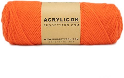 Budgetyarn Acrylic DK 021