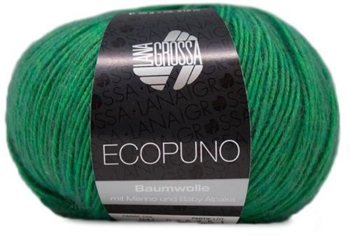 Lana Grossa Ecopuno 041 Green