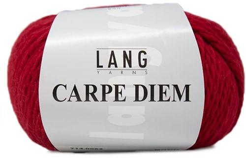 Lang Yarns Carpe Diem 062 Wine Red