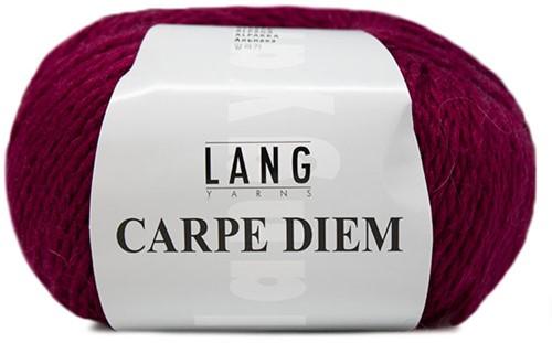 Lang Yarns Carpe Diem 064 Ruby
