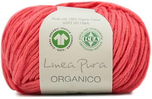 Lana Grossa Organico Uni 069 Raspberry