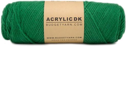 Budgetyarn Acrylic DK 087