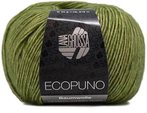 Ecopuno Sjaal Haakpakket 3 Apple Green