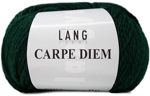Lang Yarns Carpe Diem 118 Dark Green Mélange