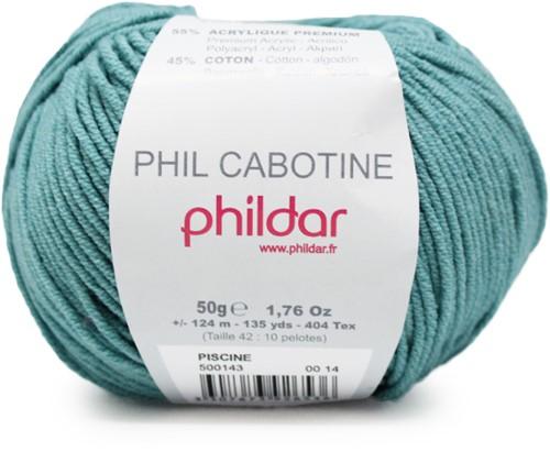 Phildar Phil Cabotine 1134 Piscine