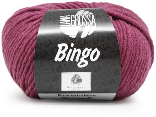 Lana Grossa Bingo 179 Berry