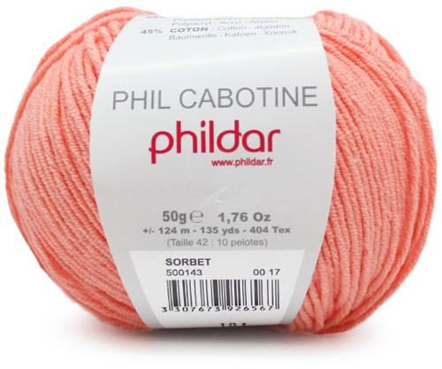 Phildar Phil Cabotine 1396 Sorbet