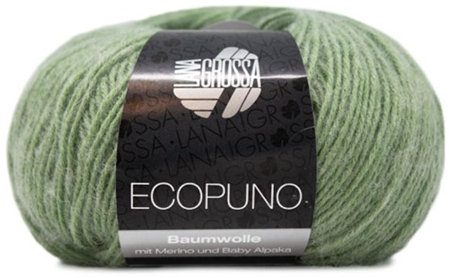 Lana Grossa Ecopuno 020 Light Green