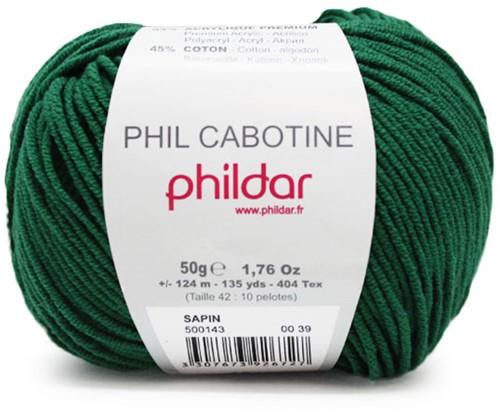Phildar Phil Cabotine 1159 Sapin