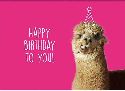 Wolplein Ansichtkaart - Happy Birthday to You!