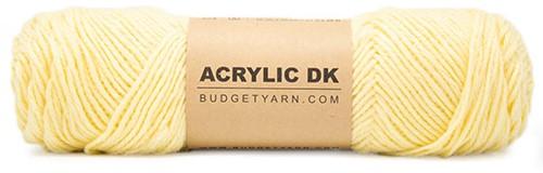 Budgetyarn Acrylic DK 010