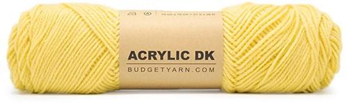 Budgetyarn Acrylic DK 011