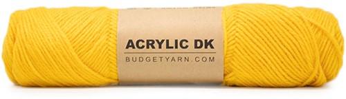 Budgetyarn Acrylic DK 015