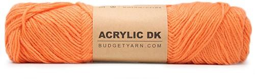 Budgetyarn Acrylic DK 017