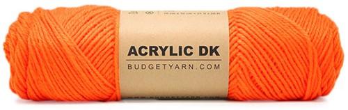 Budgetyarn Acrylic DK 019