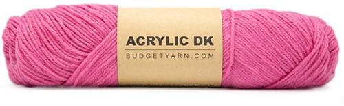 Budgetyarn Acrylic DK 036