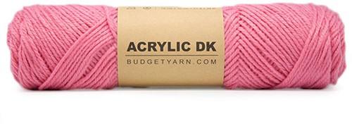 Budgetyarn Acrylic DK 048