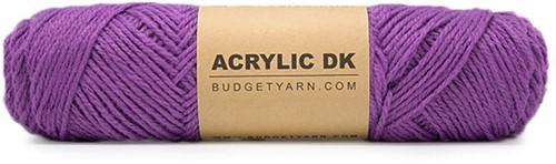 Budgetyarn Acrylic DK 055
