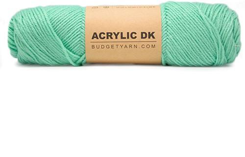 Budgetyarn Acrylic DK 075
