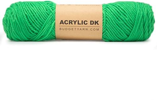 Budgetyarn Acrylic DK 086