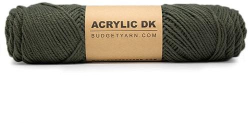 Budgetyarn Acrylic DK 091