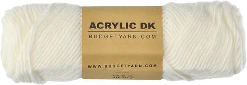 Budgetyarn Acrylic DK 001