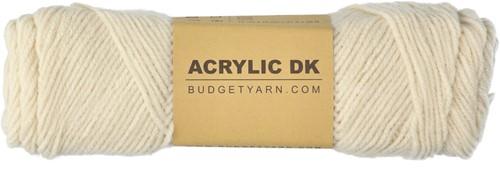 Budgetyarn Acrylic DK 002