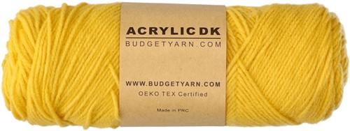 Budgetyarn Acrylic DK 013