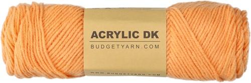 Budgetyarn Acrylic DK 016