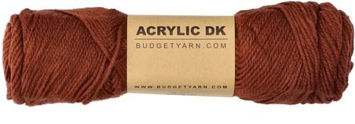 Budgetyarn Acrylic DK 025