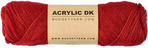 Budgetyarn Acrylic DK 029