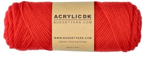 Budgetyarn Acrylic DK 032
