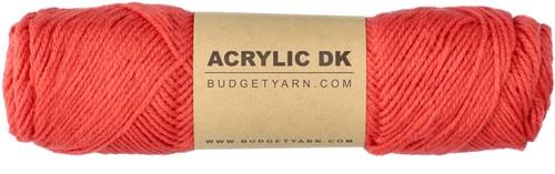 Budgetyarn Acrylic DK 041