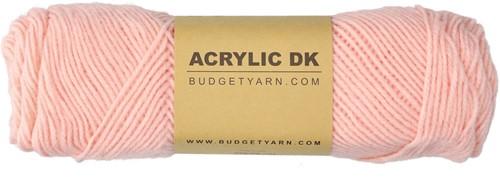 Budgetyarn Acrylic DK 042