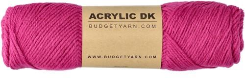 Budgetyarn Acrylic DK 049