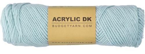 Budgetyarn Acrylic DK 063