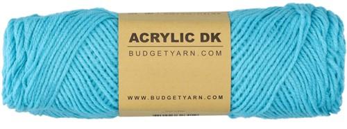 Budgetyarn Acrylic DK 065 Turquoise