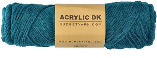 Budgetyarn Acrylic DK 070