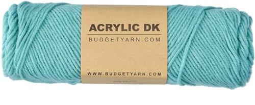 Budgetyarn Acrylic DK 072