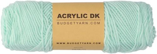 Budgetyarn Acrylic DK 073