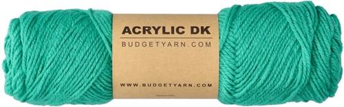 Budgetyarn Acrylic DK 077