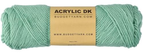 Budgetyarn Acrylic DK 079