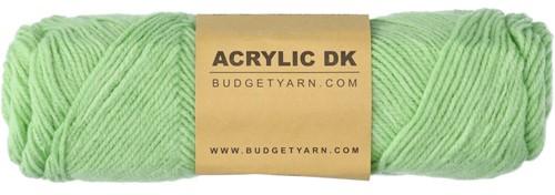 Budgetyarn Acrylic DK 081 Lettuce