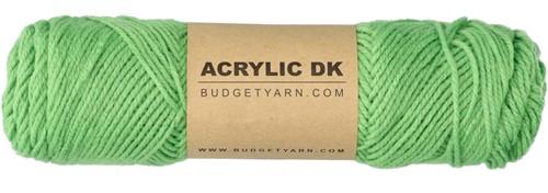 Budgetyarn Acrylic DK 082