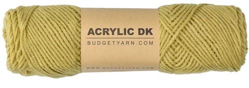 Budgetyarn Acrylic DK 089