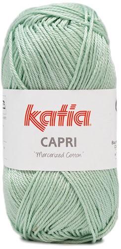 NEW - Katia Capri 174