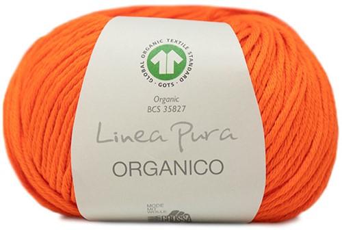 Lana Grossa Organico Uni 124 Pumpkin