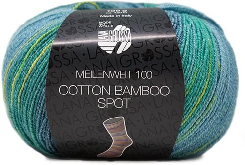 Lana Grossa Meilenweit 100 Cotton Bamboo Spot 2353