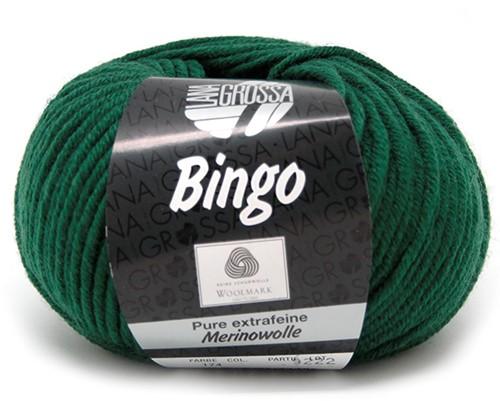 Lana Grossa Bingo 174 Spar