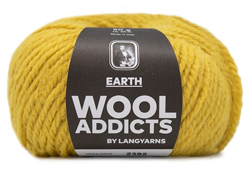 Lang Yarns Wooladdicts Earth 011